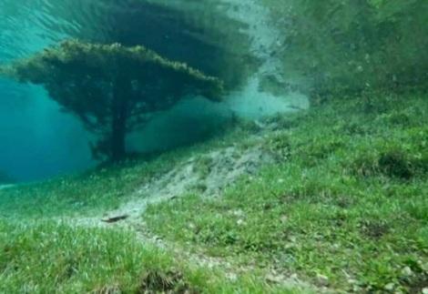 Taman Bawah Air (3)