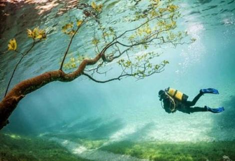 Taman Bawah Air (4)