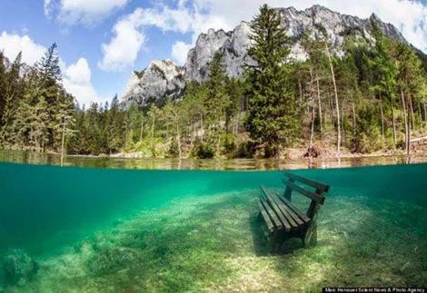 Taman Bawah Air (5)