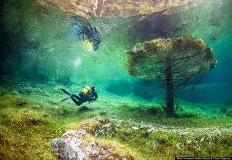 Taman Bawah Air (6)